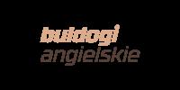 buldogiangielskie-new
